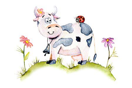 Akvarell aranyos rajzfilm tehén egy réten, katicabogár és egyszerű virágok illusztrációk, kézzel rajzolt elszigetelt fehér alapon