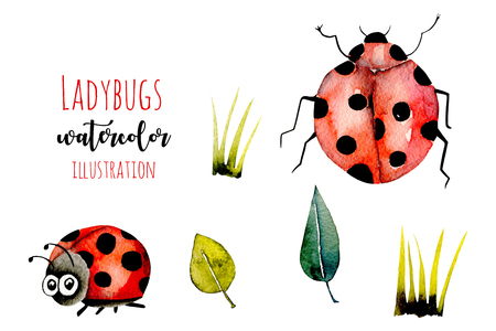 Set of watercolor cute cartoon ladybugs and simple plants illustrations, hand drawn isolated on a white background Stock fotó