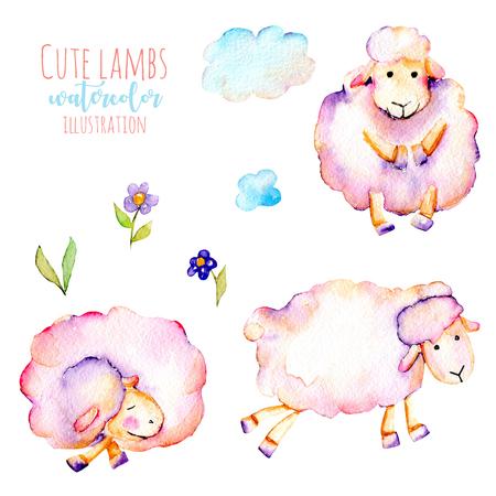 수채화 귀여운 핑크 양들의 집합, 간단한 꽃과 구름 삽화, 손으로 그린 흰색 배경에 고립 된