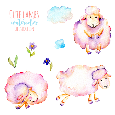 Set of watercolor cute pink sheeps, simple flowers and clouds illustrations, hand drawn isolated on a white background