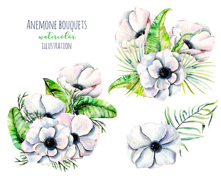 Watercolor white anemone flowers bouquets, hand painted isolated on a white background Stock Photo