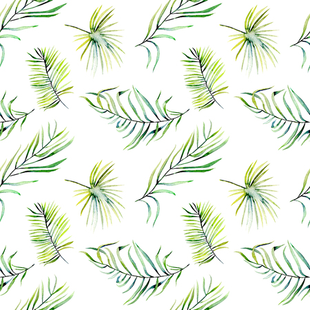 Watercolor green tropical palm leaves and fern branches seamless pattern, hand painted isolated on a white background