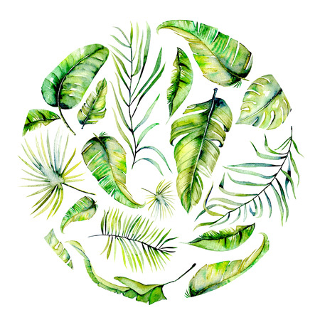 Watercolor tropical palm leaves circle illustration, hand painted on a white background