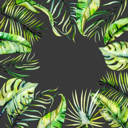 Folhas de folhas de palmeiras tropicais de aquarela, pintadas