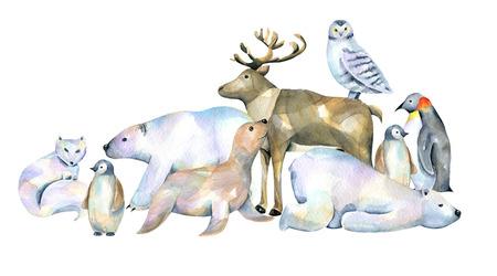 Watercolor cute polar animals ilustra Banco de Imagens