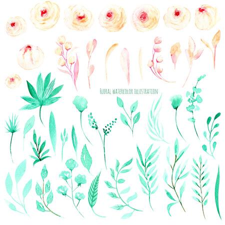 Sada akvarel růžové růže a listy máty, květinové přání, dekorace svatební pozvánky Reklamní fotografie