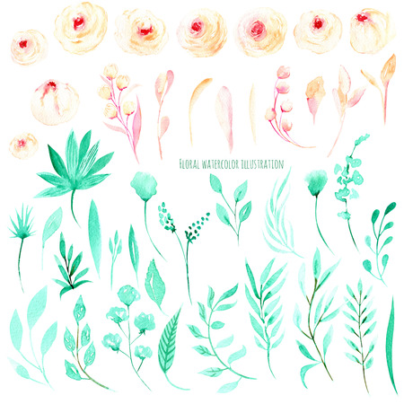Set of watercolor pink roses and mint leafs, floral greeting card, decoration of a wedding invitation