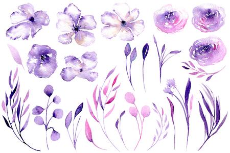 Sada akvarelních fialových růží, rhododendronových květin a větví, ilustrace květinových prvků, ručně kreslených izolovaných na bílém pozadí, pro blahopřání, dekorace svatební pozvánky