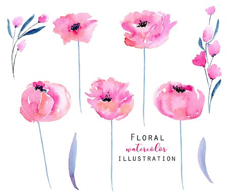 Watercolor pink poppies and floral branches set, hand drawn isolated on a white background