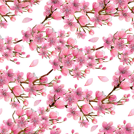 Watercolor spring blooming cherry tree branches seamless pattern, hand painted on a white background