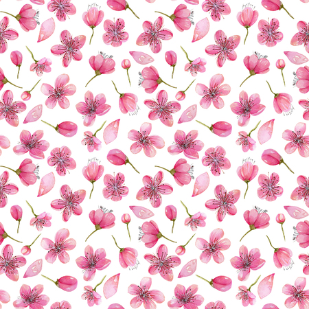 Watercolor spring cherry tree flowers seamless pattern, hand painted on a white background