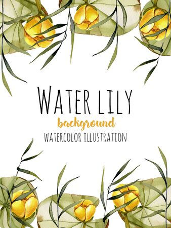 Watercolor reeds and yellow water lily background, greeting card template, artistic design background, hand painted on a white background