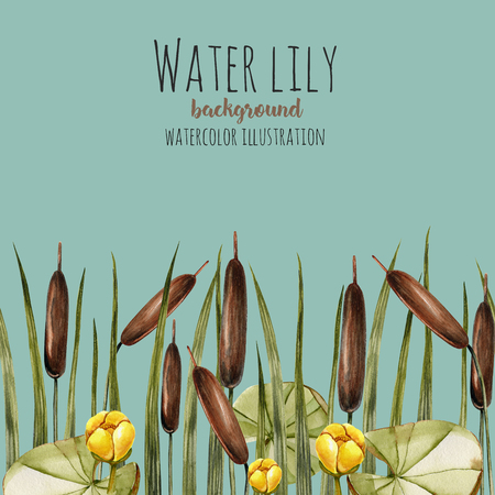 Watercolor bulrush and yellow water lily background, greeting card template, artistic design background, hand painted on a blue background Фото со стока