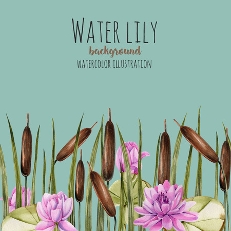 Watercolor bulrush and pink lotus background, greeting card template, artistic design background, hand painted on a blue background Фото со стока