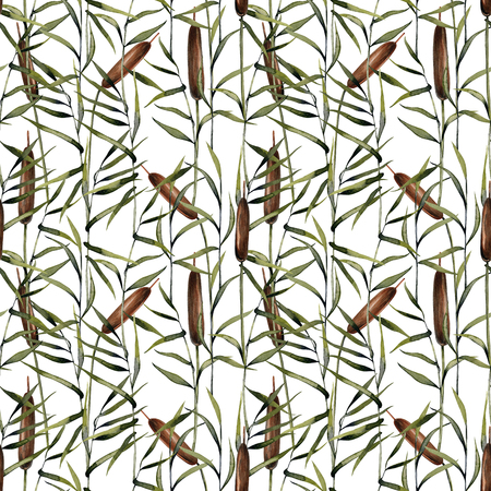 Watercolor bulrush seamless pattern, hand painted on a white background