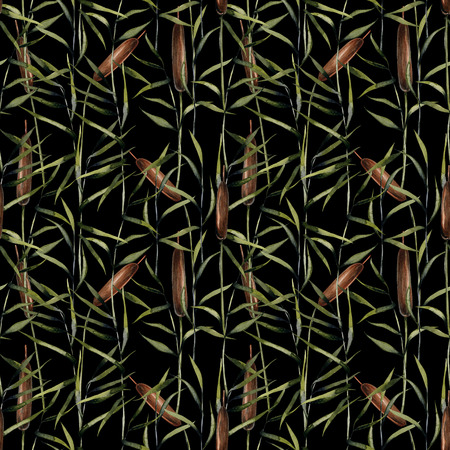 Watercolor bulrush seamless pattern, hand painted on a dark background