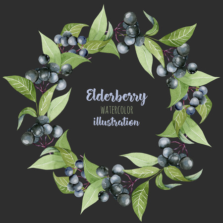 Watercolor elderberry branches wreath, frame border, hand painted on a dark background