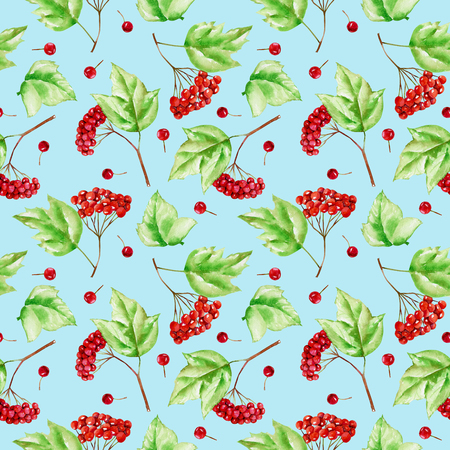 Watercolor viburnum branches seamless pattern, hand painted on a blue background Stock Photo