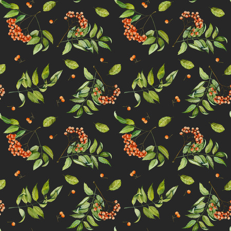 Watercolor rowan branches, berries and leaves seamless pattern, hand painted on a dark background Banco de Imagens