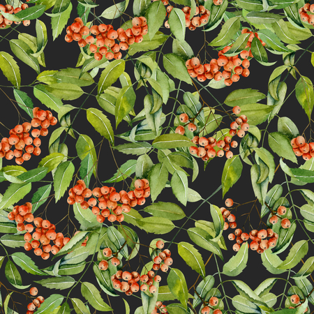 Watercolor rowan branches seamless pattern, hand painted on a dark background