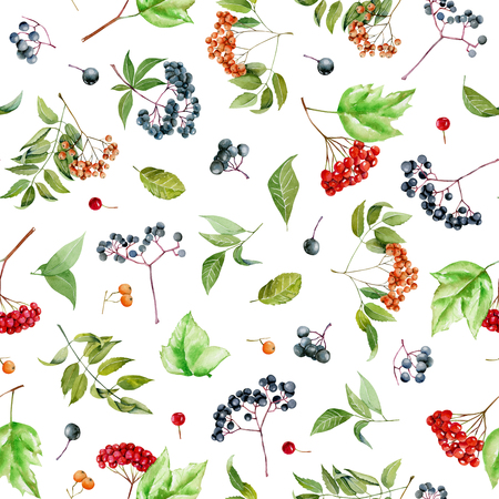 Watercolor viburnum, rowan and elder branches seamless pattern, hand painted on a white background