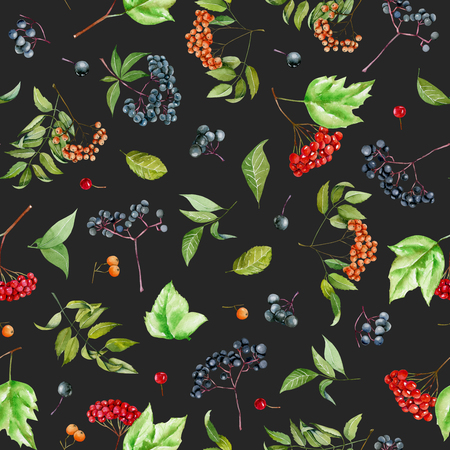 Watercolor viburnum, rowan and elder branches seamless pattern, hand painted on a dark background