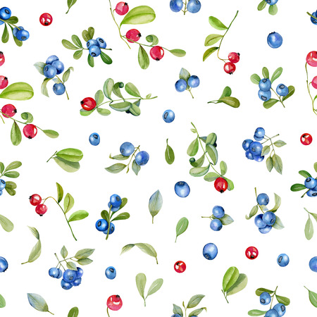 Watercolor cranberry and blueberries seamless pattern, hand painted on a white background