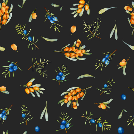 Watercolor juniper and sea buckthorn branches seamless pattern, hand painted on a dark background Фото со стока