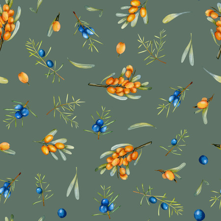 Watercolor juniper and sea buckthorn branches seamless pattern, hand painted on a gray background Фото со стока
