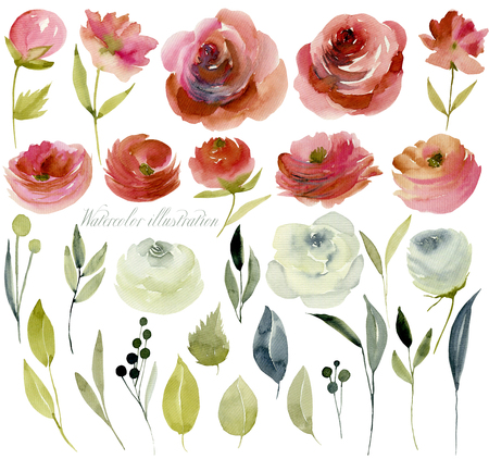 Watercolor burgundy and white roses collection Banque d'images - 114464764