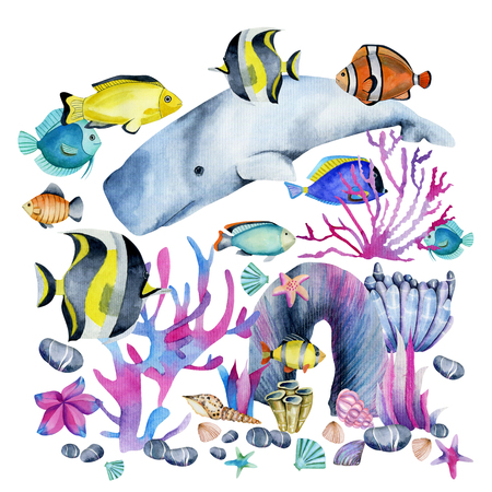 Watercolor cachalot and tropical fishes