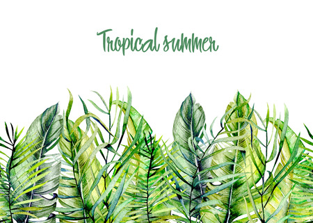 Watercolor tropical green leaves border, hand drawn on a white background