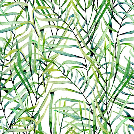 Watercolor fern leaves seamless pattern, hand drawn on a white background