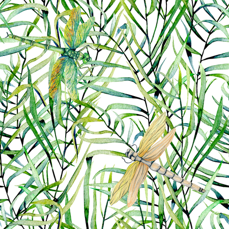 Watercolor fern leaves and dragonflies seamless pattern, hand drawn on a white background