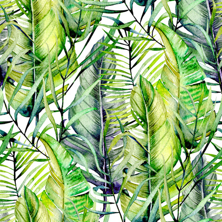 Tropical green leaves, hand drawn on a white background