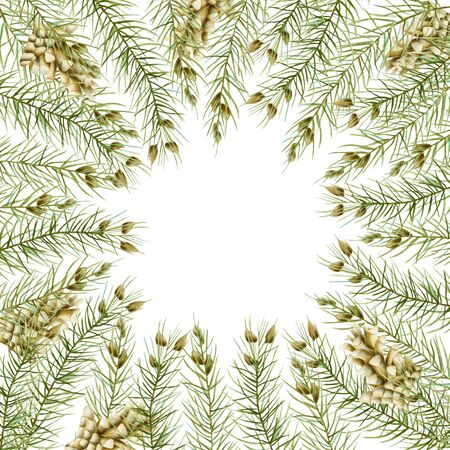 Greeting card with watercolor branches of spruce and fir cones, hand drawn on a white background Banco de Imagens