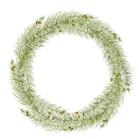 Wreath of watercolor branches of spruce, hand drawn on a white background
