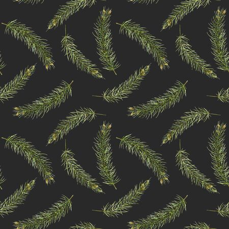Seamless pattern of watercolor branches of spruce, hand drawn on a dark