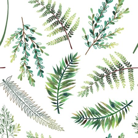 Seamless pattern with hand drawn green fern branches on white