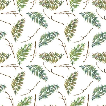 Seamless pattern with hand drawn green fern leaves and tree branches on white Banque d'images