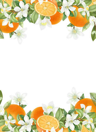 Card template, frame of hand drawn blooming oranges tree branches, flowers and oranges on white background