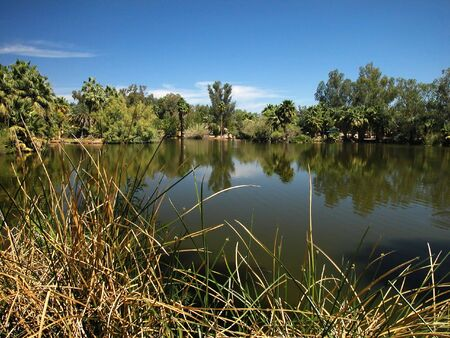 murky: Murky Lagoon