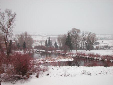 garish: Snowy Pond in Winter