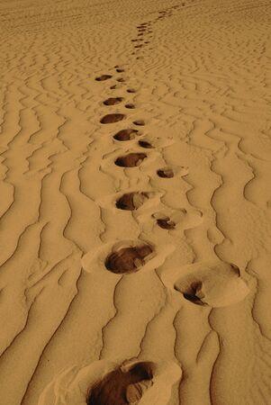 Little Girl Wandering Alone in Sand Dunes