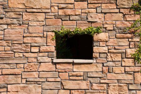 ウィンドウと緑色茎系統と石の壁 写真素材