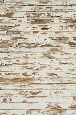 古い木を割れ、苦痛、ノットと穀物を示す旧式な白い塗料を剥離すると 写真素材