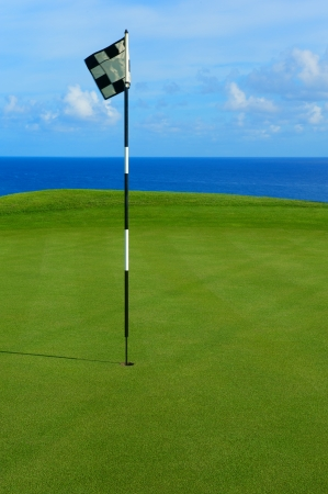 This is a flag and pin on the tee of a golf course in Hawaii overlooking the Pacific Ocean photo