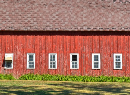 broadside: This is a horizontal photo of the broadside of a barn with white windows and faded, damaged, red paint