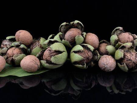Inshell walnuts on a black background. Freshly picked nuts are reflected on dark glass. Autumn, nuts picking time.