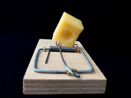 Free cheese in a mousetrap on a black background. A wooden trap with a bait with a metal mechanism for rats and mice.